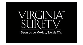 Virginia Surety Seguros de Auto